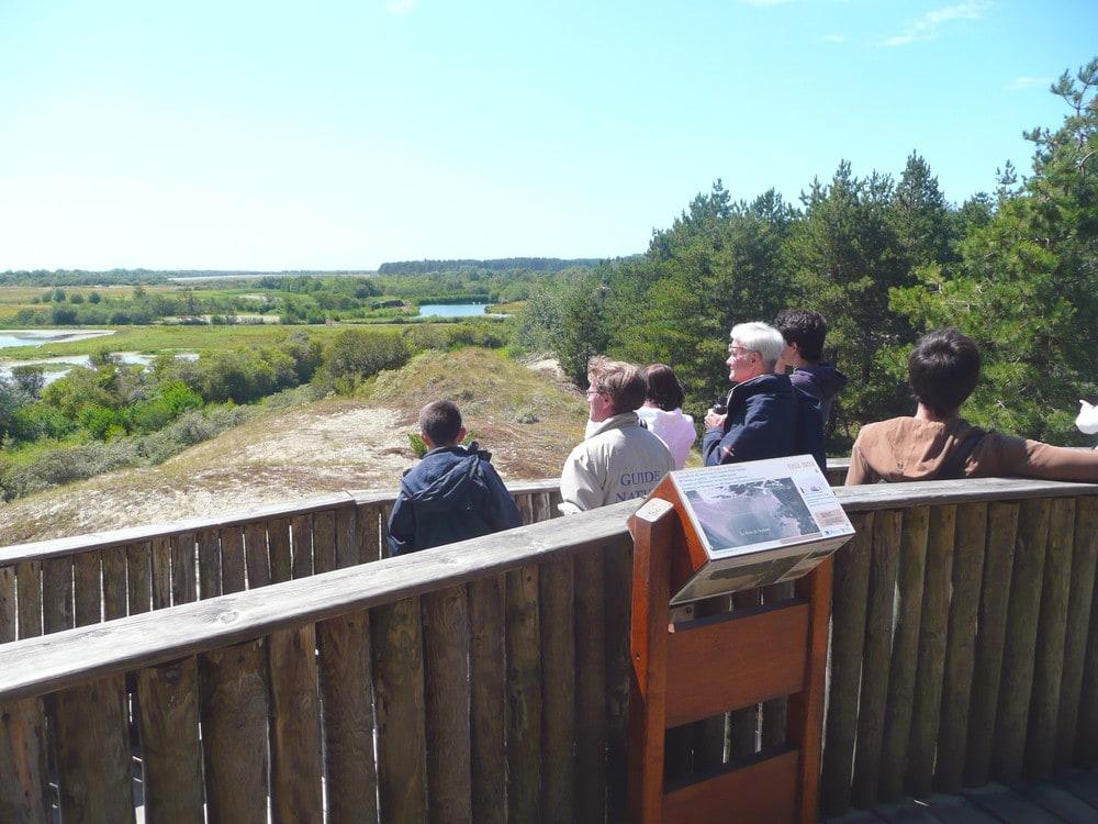 Découverte du parc ornithologique du Marquenterre en Baie de Somme - à 10mn du Crotoy