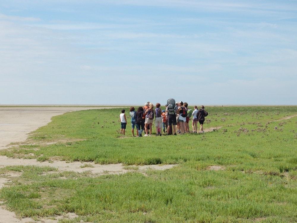 Traversée à pied en Baie de Somme avec un guide nature spécialisé au départ du Crotoy