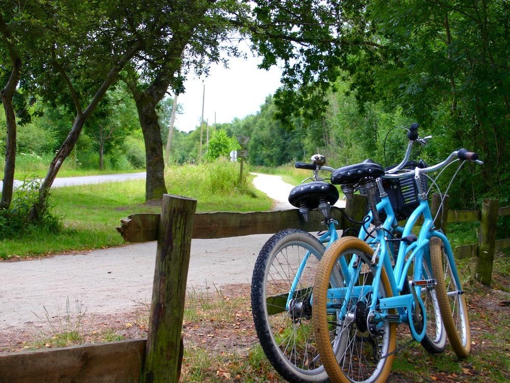 Vélo en Baie de Somme le long des pistes cyclables sécurisées